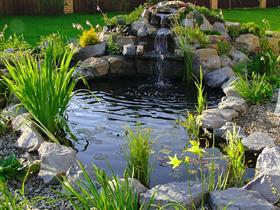 Как своими руками сделать пруд в саду фото