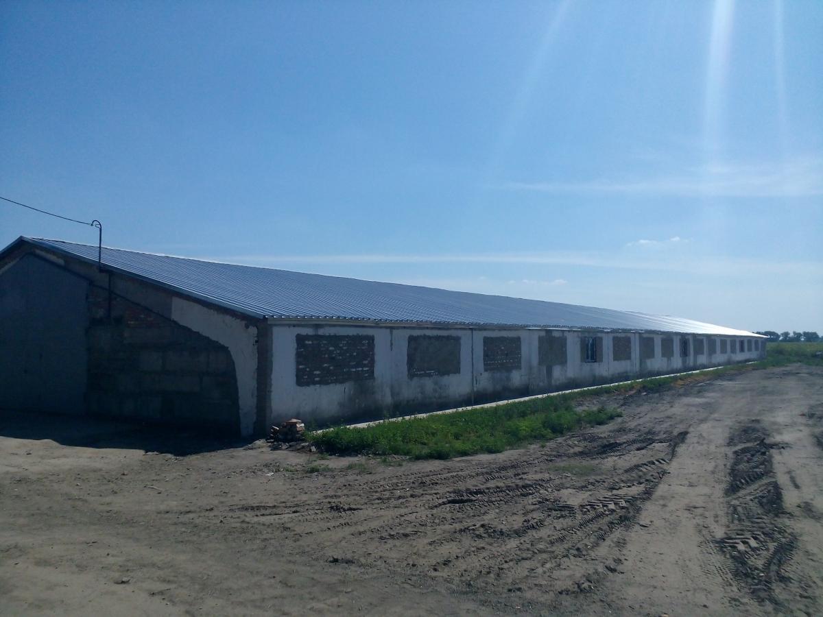 Ремонт кровли крыш в новосибирске